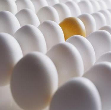 20100419200733-huevos.jpg
