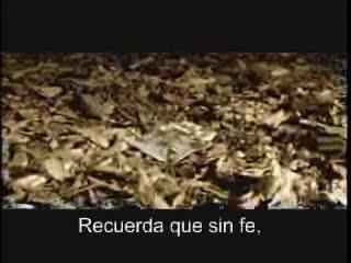DEL VIDEO DE LOS MARCIANITOS.